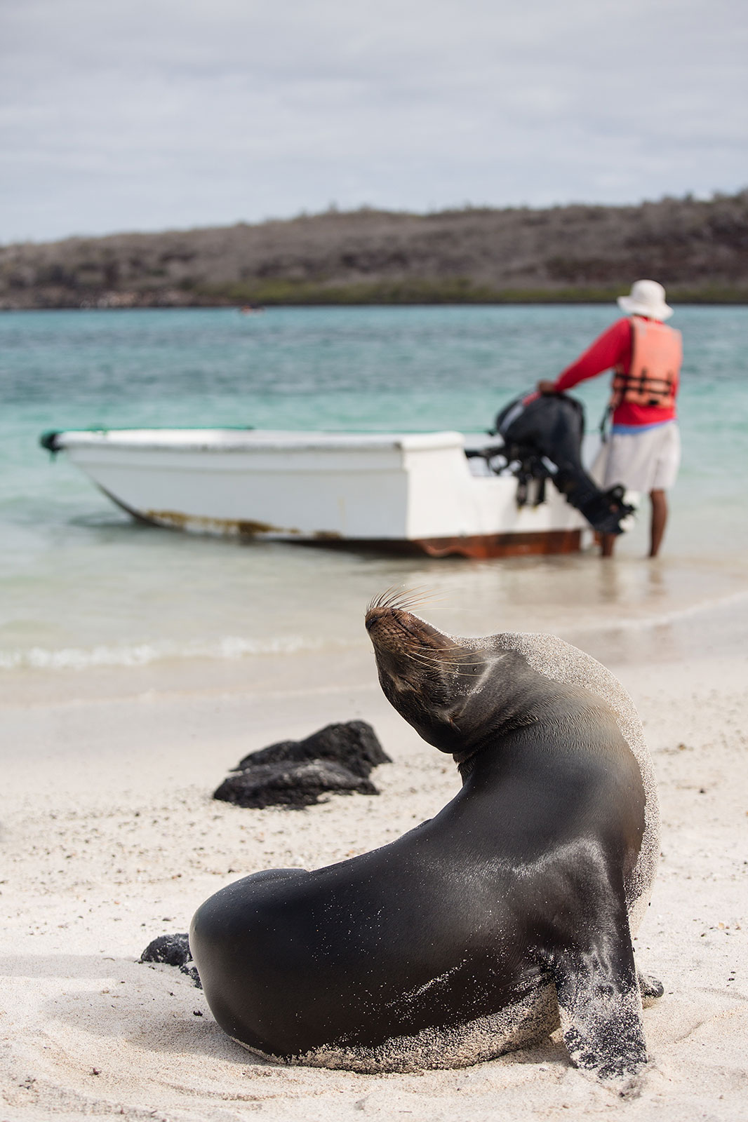 Galápagos: one of a kind